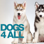 Dogs4All